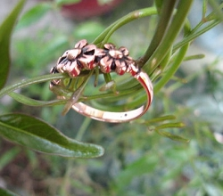 Copper Ring CR2212 Size 8 - 3/16  of an inch wide.